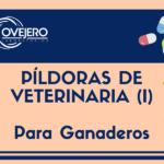 pildoras_veterinaria